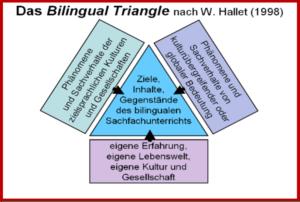 Bilingualer Sachfachunterricht am CEG